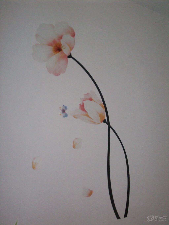 【欣赏一下我的水果贴画墙】_山东车友会_汽车论坛-易车网