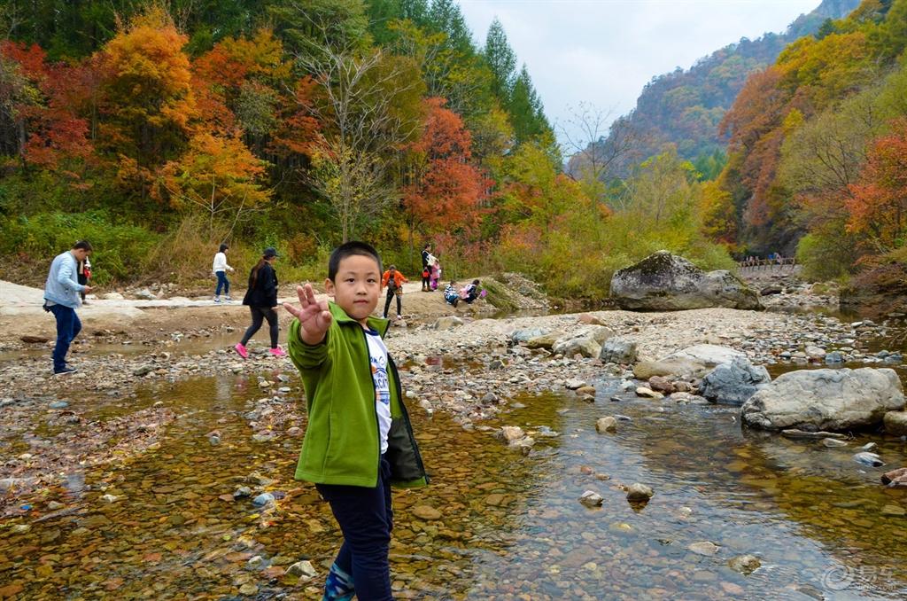 小溪边玩耍图片