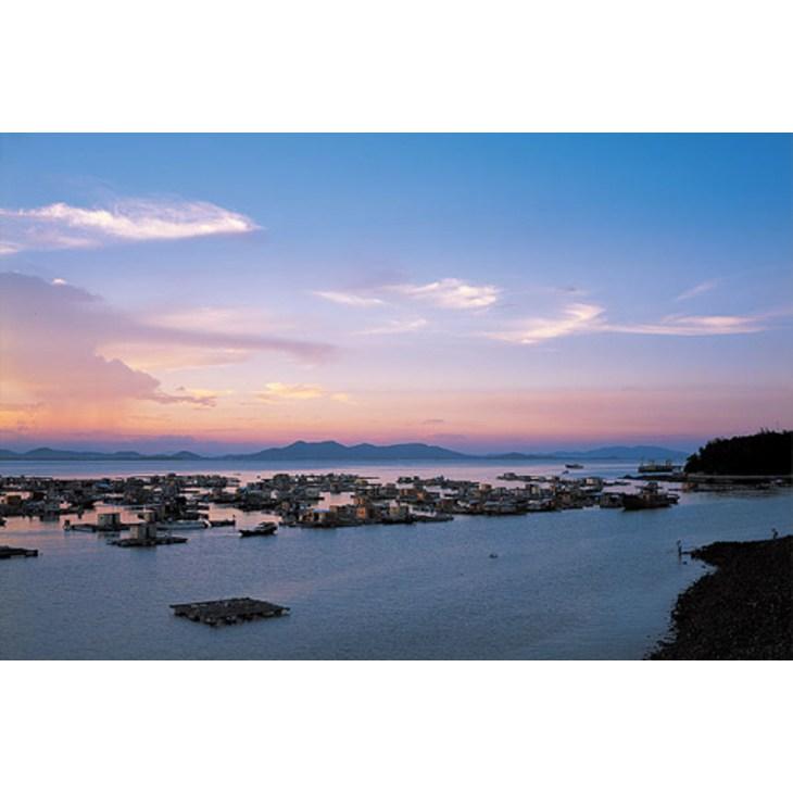 阳江海陵岛一夜程 云浮—阳江/ 浏览(17453) / 回复(110) &nbsp