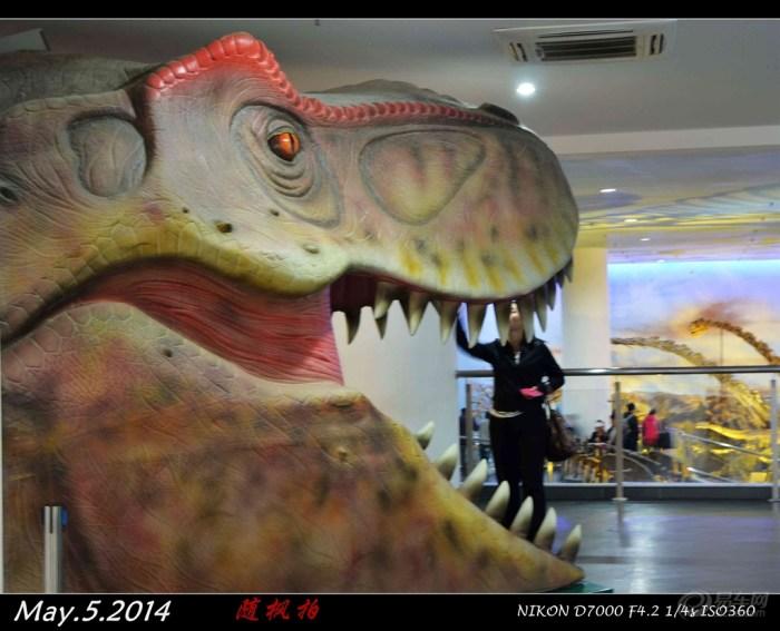 辽宁 霸王龙/霸王龙又名暴龙,(属名:Tyrannosaurus)含义:暴君蜥蜴,模式...