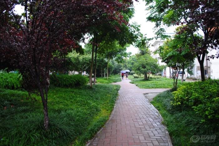 东片县城道路走起转游园步道向南一路记录拍