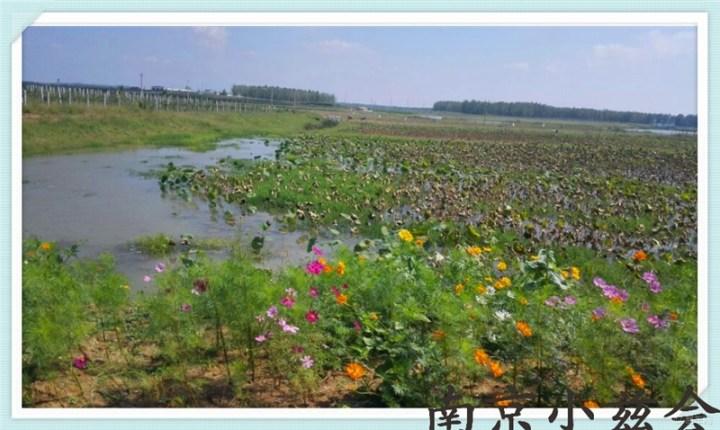 2014南京小兹会自驾六合巴布洛生态谷,风景如画,健康生态!