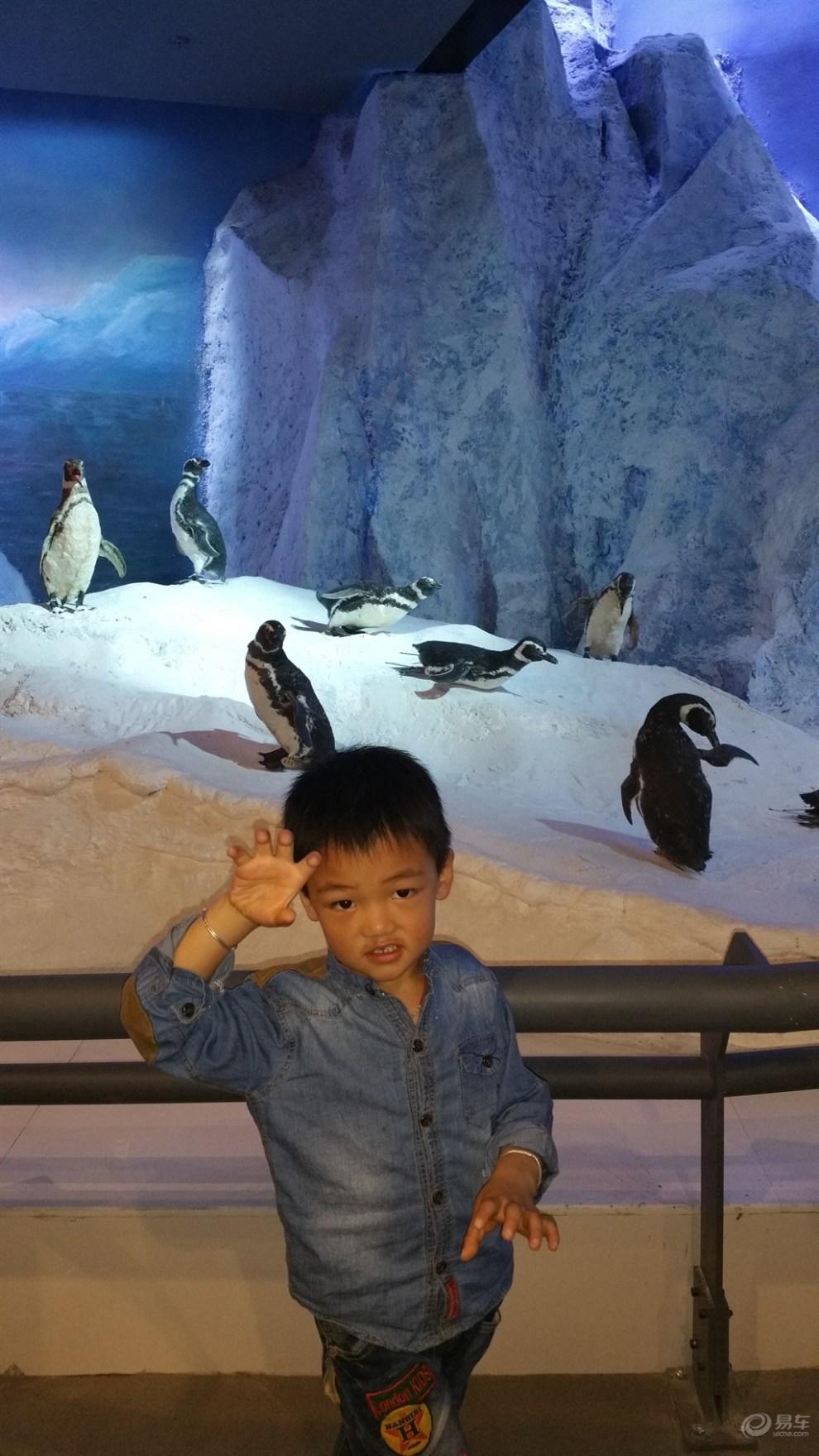 参观横店·中国世界野生动物标本馆!