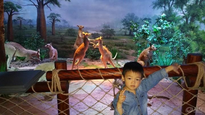 【参观横店·中国世界野生动物标本馆!