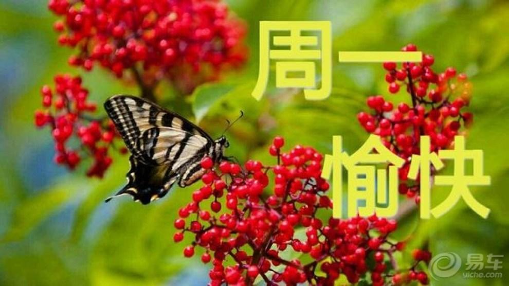 【周一上班了】_朗动论坛图片集锦