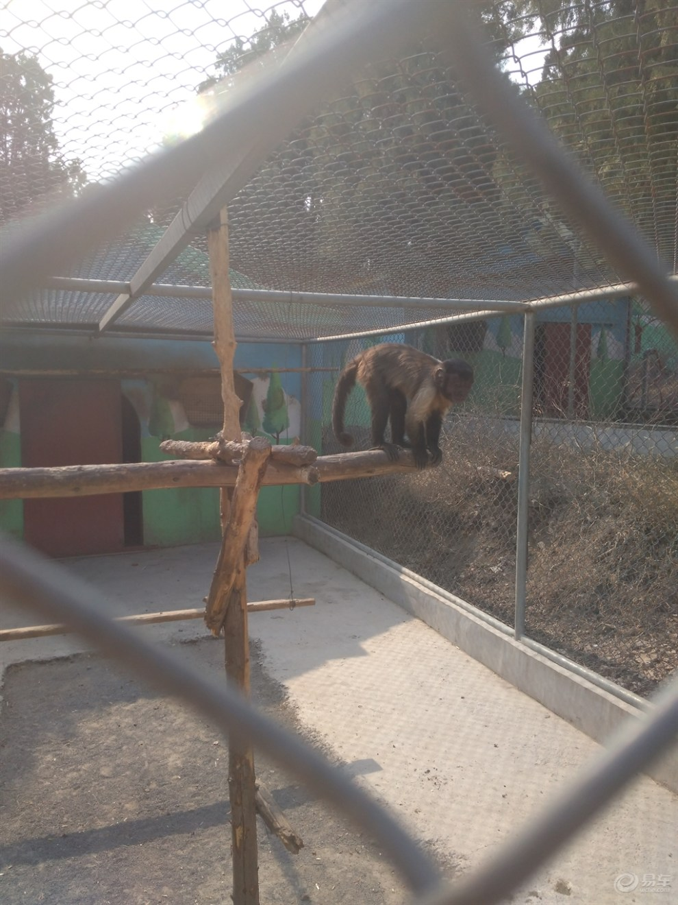 【五龙山野生动物园攻略值得一去】_河南论坛游记宜兴二日游图片