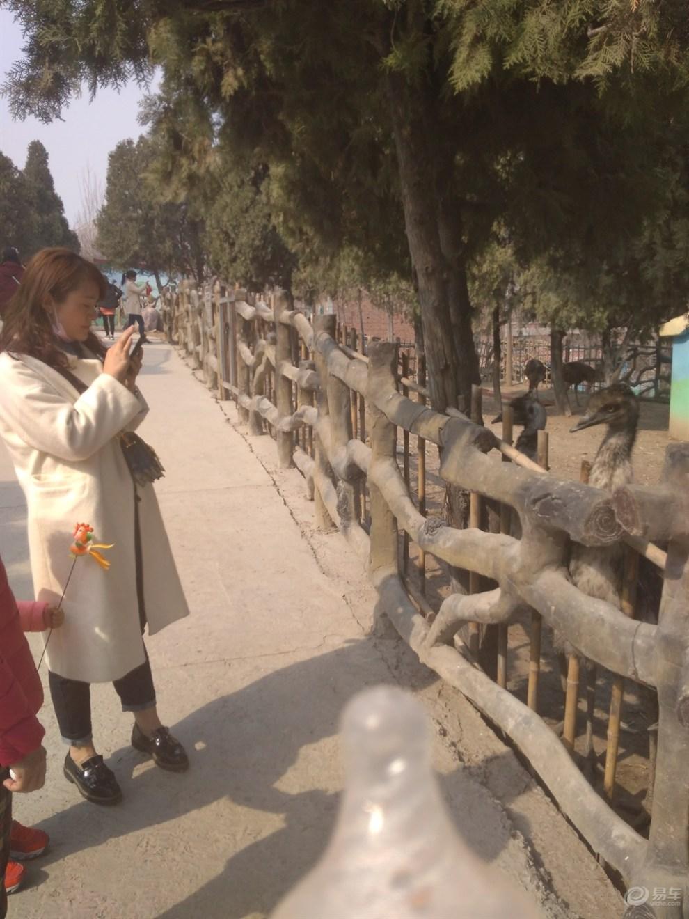 【五龙山野生动物园论坛值得一去】_河南攻略自驾游光明村游记图片
