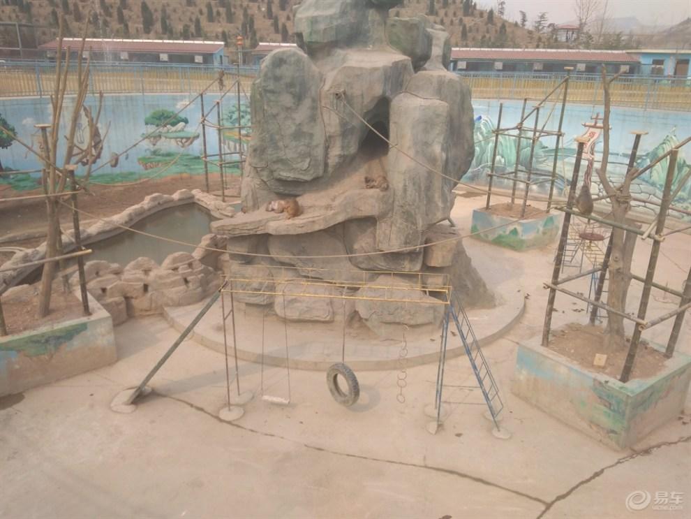 五龙山野生动物园游记 值得一去