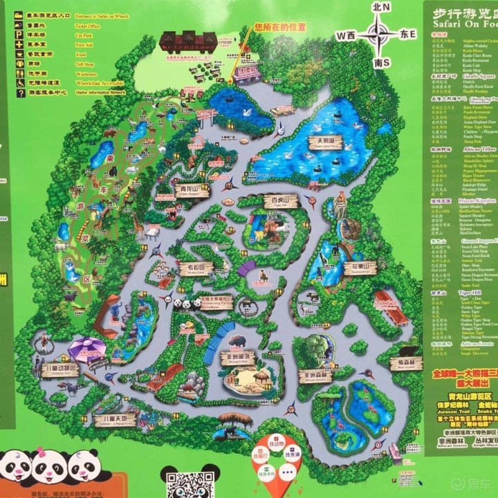周末亲子游,快乐的长隆野生动物园之旅