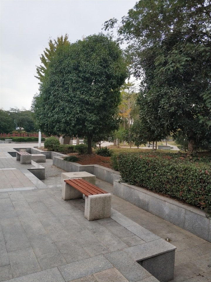 人口文化园介绍_安溪县官桥镇旧祠堂改造成文化休闲园