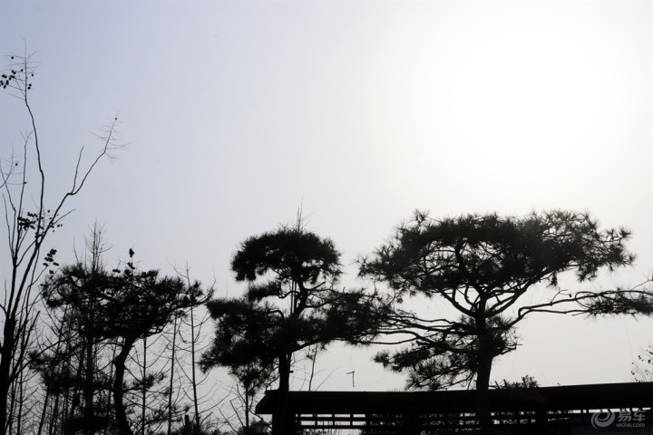 【游记】天空漏下一缕阳光,是春天的味道