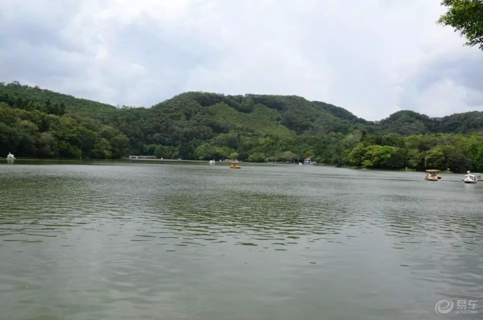凌轩带着我们一起去仙湖公园看美景