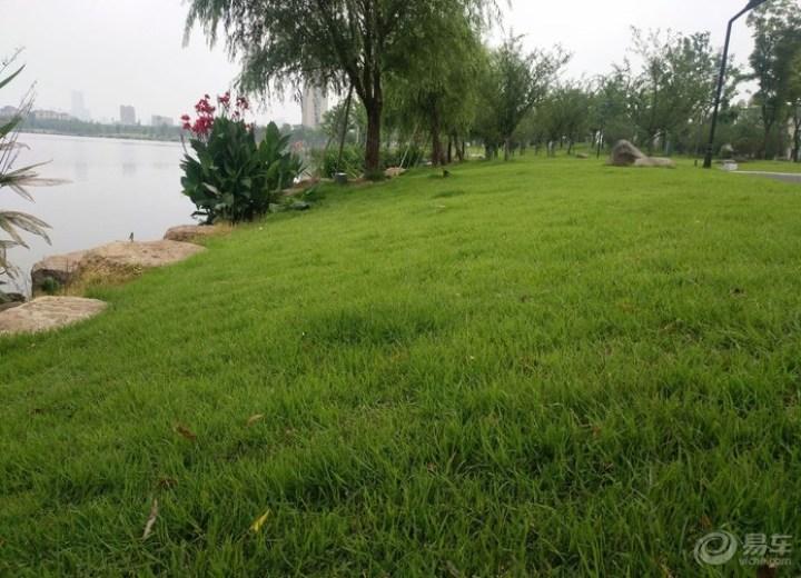 美丽公园游玩,放松心情