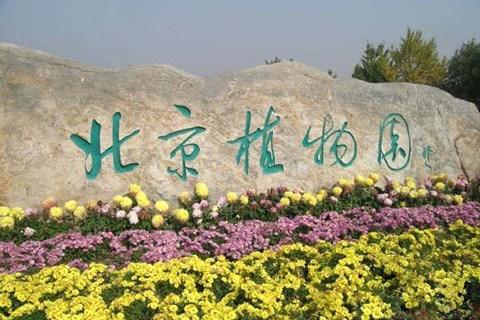 北京植物园图片